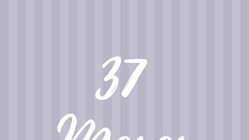 37 meses