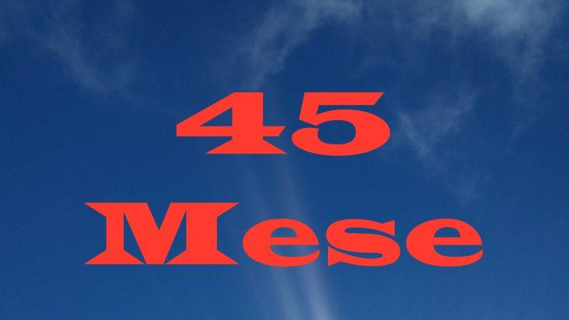 45 Meses