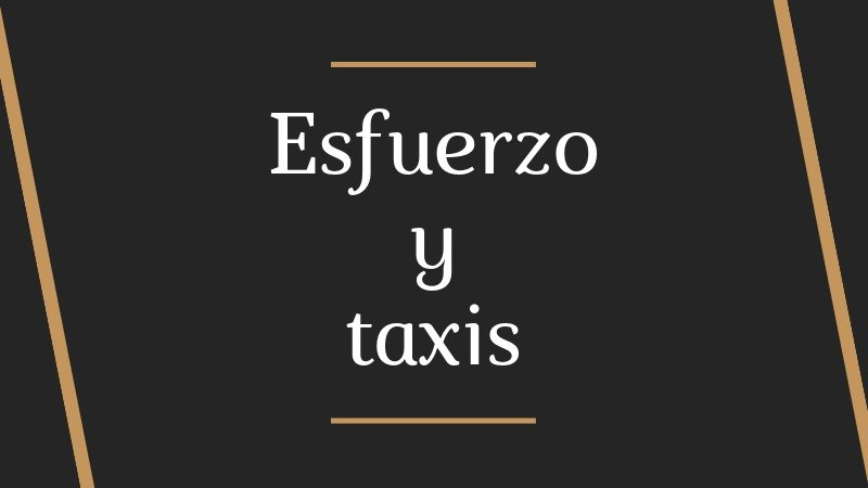 esfuerzo y taxis