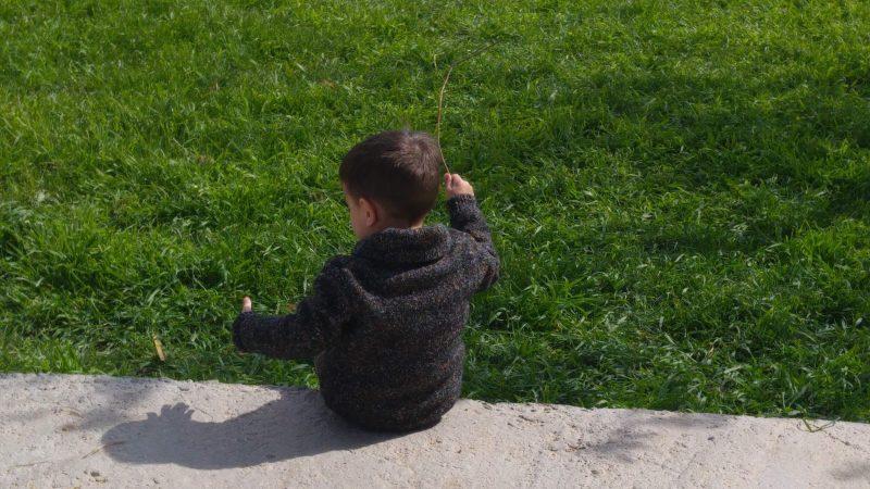 Miércoles Mudo #107: En la hierba
