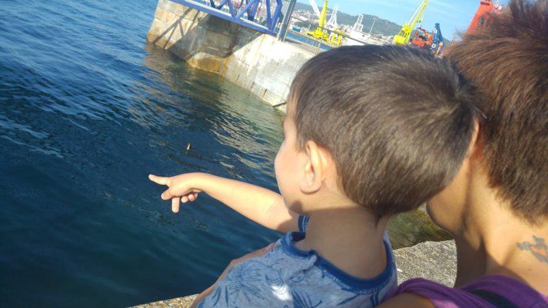 Miércoles Mudo #129: En el puerto de Vigo